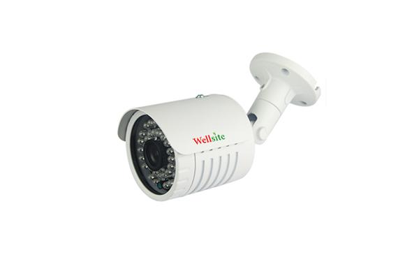 IP Camera WSE-3613EI (P)/WSE-3620EI (P)