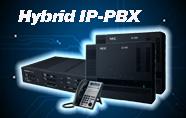 Hybrid IP-PBX